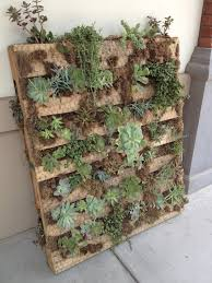 How To Make A Succulent Wall Garden by Within My Means Pallet Succulent Garden