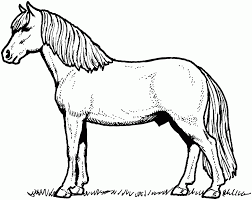 horse coloring page fablesfromthefriends com