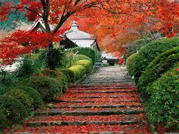 beautiful places beautiful places images beautiful japan hd wallpaper and