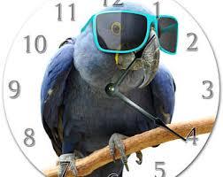 parrot home decor parrot home decor etsy