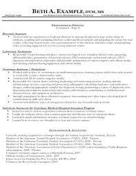 cv format for veterinary doctor resume for vet tech resume for vet tech vet tech resume format