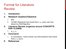 literature review example owl the effect of essay tests on