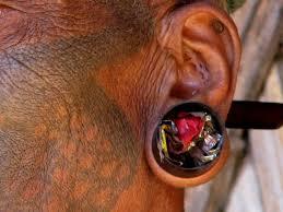 konyak naga earring and tattoo india the north eas u2026 flickr