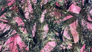 Pink Camo Dog Bed Medium Dog Bed Realtree Camo Pink With Matching Pink Inside