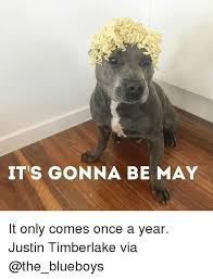 Justin Timberlake May Meme - it s gonna be may it only comes once a year justin timberlake via