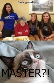 21 Of The Best Grumpy - 27 grumpy cat funny memes quotes and humor