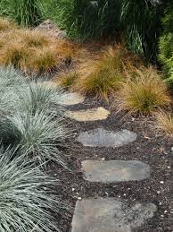 garden ideas how to combine ornamental grasses tended