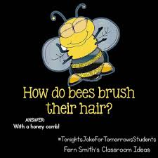 tonight u0027s joke for tomorrow u0027s students how do bees brush their