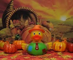 quacky thanksgiving