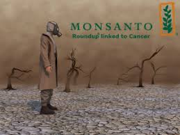Monsanto Vanity Fair Monsanto Gmo Controversy And Cancer Link To Roundup Lawsuits Follow