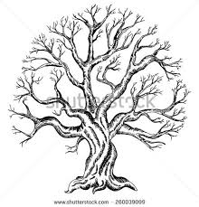 Wedding Tree Deciduous Tree Stock Images Royalty Free Images U0026 Vectors