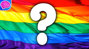 Pride Flag Colors Why Does The Rainbow Flag Represent Pride Youtube