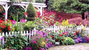 dit unique backyard gardening ideas u2013 unveiled by zola