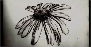 black ink daisy flower tattoo design