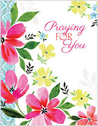 thinking of you flowers pink flowers thinking of you card