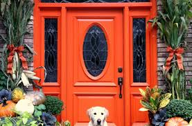 door amazing front doors design amazing front door design purple