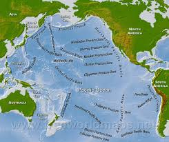 Coral Reefs Of The World Map by The Environment Doc U0027s Books
