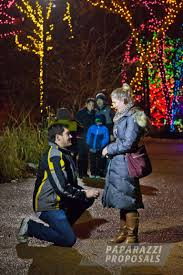 Lincoln Park Zoo Holiday Lights by Michael And Amanda U0027s Beautifully Lit Lincoln Park Zoo Proposal