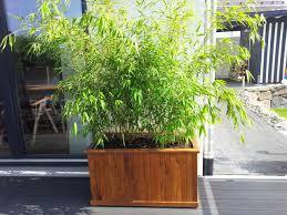 28 Ideen Fur Terrassengestaltung Dach Bambus Kubel Sichtschutz Terrasse U2013 Menerima Info