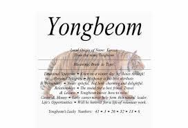 meaning of the name yongbeom is brave as tiger nydob com