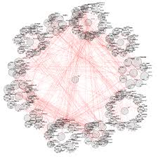 convergence of synonym networks online technical discussion