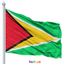 How To Fold A Flag For Hoisting Guyana Flag Colors Guyana Flag Meaning History