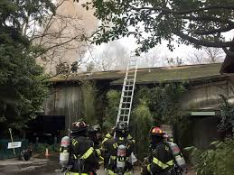 lexus service department woodland hills crews battle fire at woodland park zoo komo
