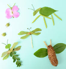 nature bugs craft activities and homeschool