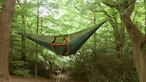 tree hanging tent provides above ground shelter