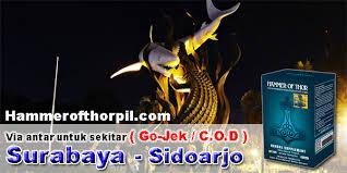 jual hammer of thor asli cod di surabaya dan sidoarjo hammer of thor