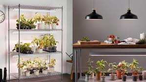 what is the best lighting for growing indoor choose the best grow lights for plants