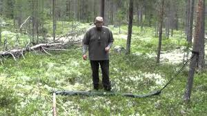 the single tree hammock setup