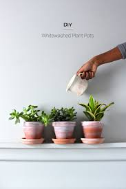 diy whitewashed plant pots fish u0026 bull