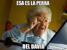 Memes De David - esa es la perra del david abuela en internet generar memes