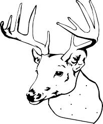 nice inspiration ideas deer head coloring pages 3 deer hunting is
