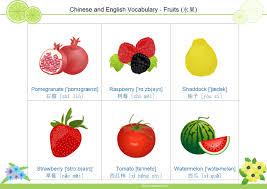fruit flashcard 4 free fruit flashcard 4 templates