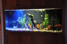 yet another high brightness led hbled aquarium lamp 4 steps