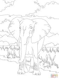 african bush elephant coloring page free printable coloring pages