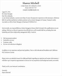 job application letter examples amitdhull co