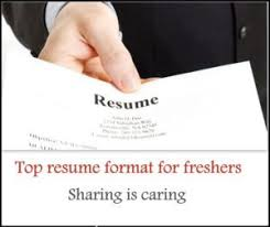 Sample Resume Formats For Freshers by Top 5 Resume Format For Freshers Free Download Freshers 360