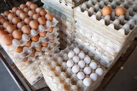 what the fast food industry u0027s shift to cage free eggs really means