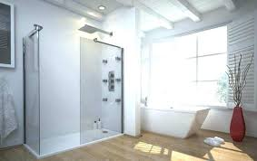 Shower Curtains For Stand Up Showers Shower Curtain For Walk In Shower Attractive Stand Up Shower