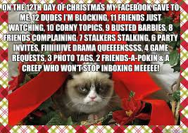 Anti Christmas Meme - on the 12th day of christmas my facebook gave to me 12 dudes i m