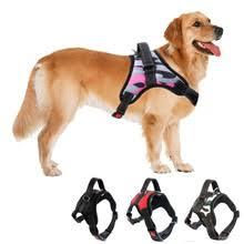 Comfort Flex Dog Harness Popular Flex Dog Leash Buy Cheap Flex Dog Leash Lots From China
