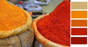 orange spice color color palette of the week spicy