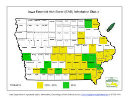 Iowa State Map Emerald Ash Borer Dubuque Ia Official Website