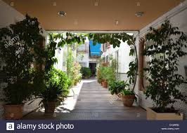 andalusian patio of the typical spanish house in cordoba stock
