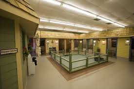 Dog Daycare Floor Plans by About Knoxville All Kreatures Pet Care Facility All Kreatures