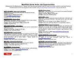 employment application template california cv templates for mac
