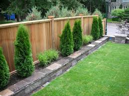 absorbing wooden fence design for backyard come with sod